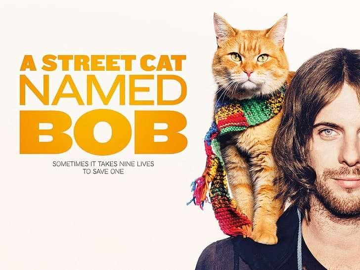 A-Street-Cat-Named-Bob-Feature